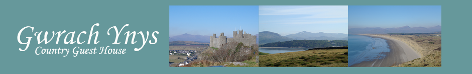 Bed and Breakfast, B&B, Harlech, Snowdonia, North Wales
